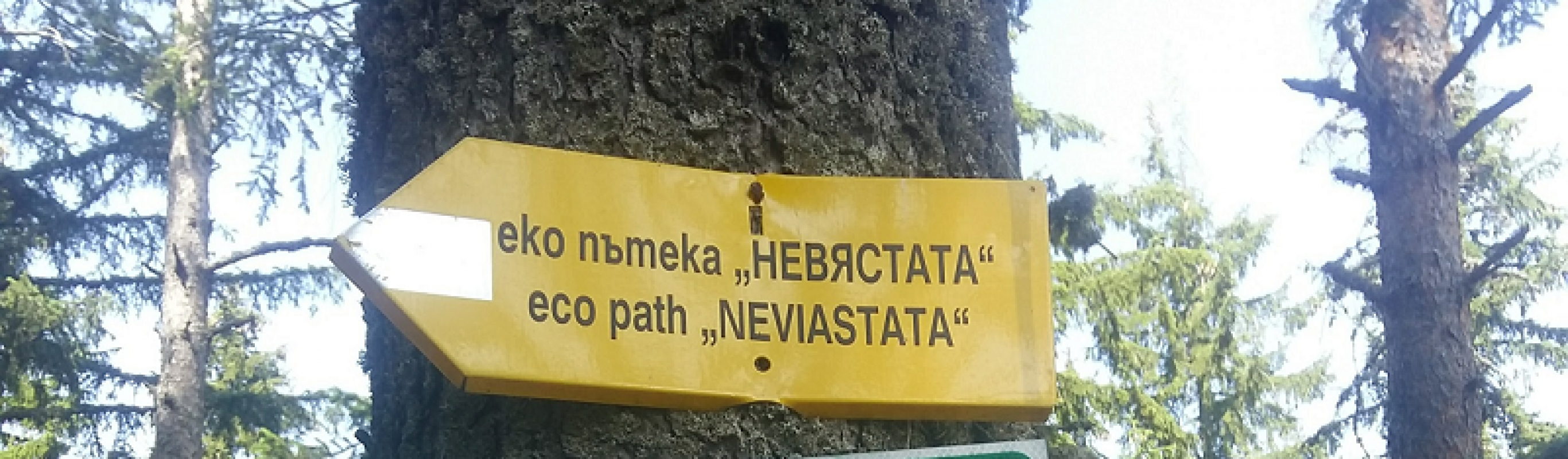 Weekend getaway: Nevyastata eco-trail